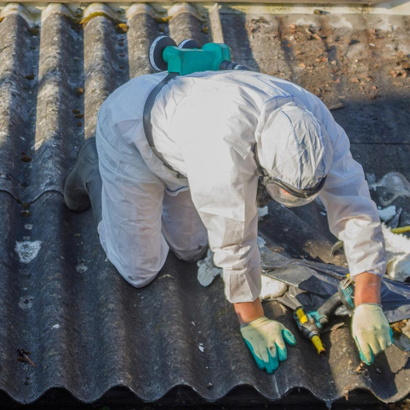 Image for Asbestos Re-Inspections